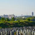 写真: 潮見坂平和公園から見た桃花台ニュータウン(2016年10月20日) - 1