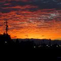 写真: 夕焼けを浴びた鱗(うろこ)雲 - 2