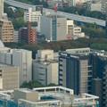 写真: ミッドランドスクエア「スカイプロムナード」から見た景色(夕方) - 45:名古屋市科学館と白川公園