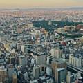 写真: ミッドランドスクエア「スカイプロムナード」から見た景色(夕方) - 51:北東側