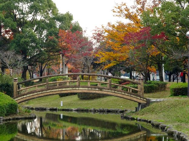 落合公園の紅葉 - 2