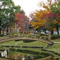 写真: 落合公園の紅葉 - 2