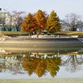 写真: 落合公園の紅葉 - 22