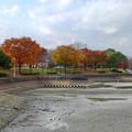 写真: 落合公園の紅葉 - 27