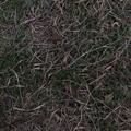 写真: Twitter 6.68.1:Periscopeを使ったライブ動画配信が可能に! - 2