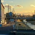 写真: 八田川沿いから見た名駅ビル群 - 11