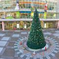 勝川駅前のクリスマスツリー 2016 No - 4(パノラマ)