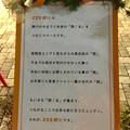 写真: クリスマスシーズンの夜の「ままま勝川」 - 3