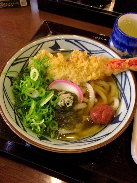 Photos: 丸亀製麺:大海老うどん - 1