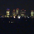 写真: 大池緑地公園から見た、夜の名駅ビル群 - 4