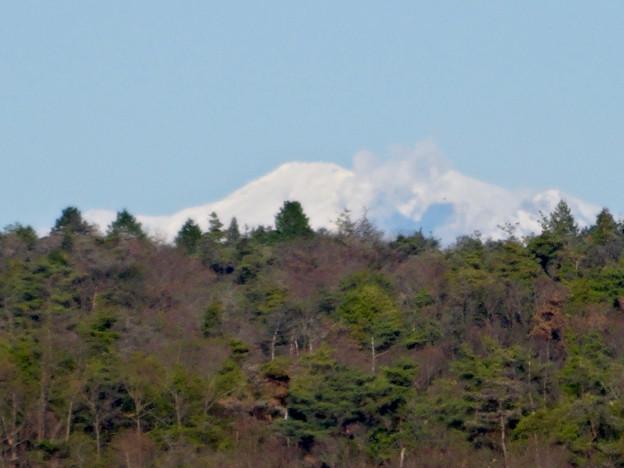 写真: 冬の入鹿池 - 15:雪を戴く御嶽山?
