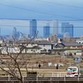 大池緑地公園から見た名駅ビル群 - 2