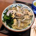 写真: 丸亀製麺:期間限定の「あさりうどん」