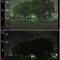 写真: 多機能写真・動画撮影&編集アプリ「Musemage」:HDR >夜間モードで撮影 - 2(モード有効・無効比較)
