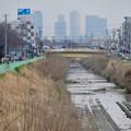 写真: 八田川沿いから見えた名駅ビル群 - 6