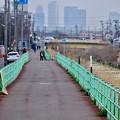 写真: 八田川沿いから見えた名駅ビル群 - 7