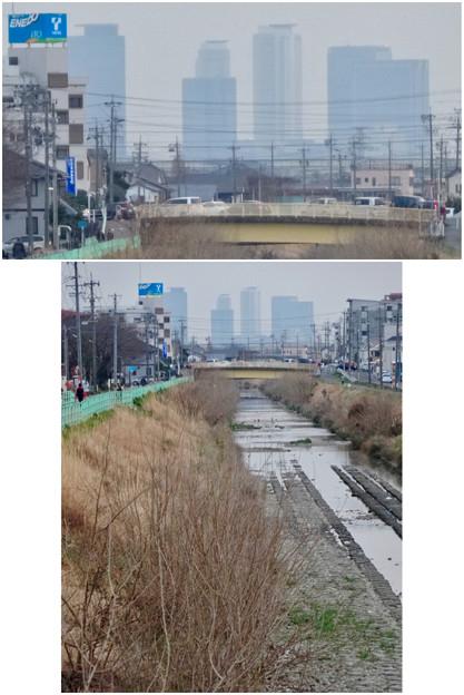 八田川沿いから見えた名駅ビル群 - 11