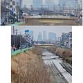 写真: 八田川沿いから見えた名駅ビル群 - 11