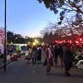 Photos: 沢山の人で賑わってた花見シーズンの鶴舞公園(2017年4月5日)- 18