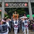 Photos: 女神輿