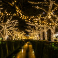 写真: Golden River
