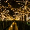 写真: Golden River