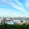 港の見える公園の展望