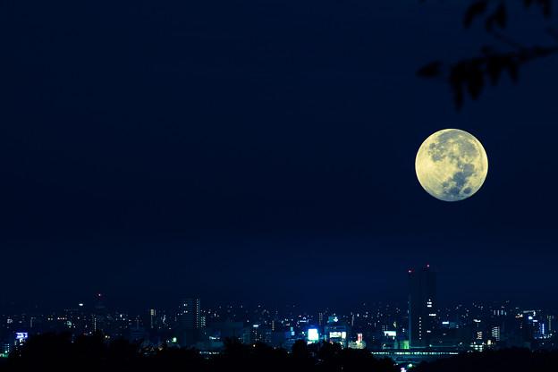 moonあなたは知ってるの