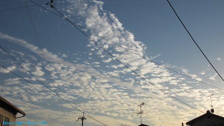 hiro 君のための秋の空、空と雲が、高いです(^^;