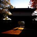 Photos: 晩秋の櫓門
