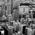 写真: big city