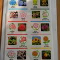 Photos: さいたま市 10区の区の花