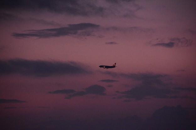 夕闇と、飛行機。