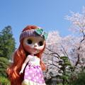 桜と瀬野千佳