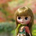 写真: 紅葉とスローニーム