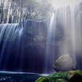 写真: 春の鍋ヶ滝