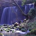 写真: 鍋ヶ滝全景