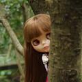 写真: 春の子