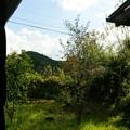 閑庭を過ぐる季節の空模様