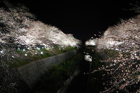 yamazaki0331_1
