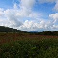 Photos: 八島ヶ原湿原