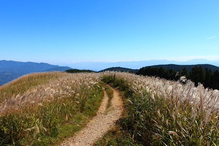 岩湧山(いわわきさん)