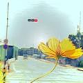 フラリ途中ユラリの花......