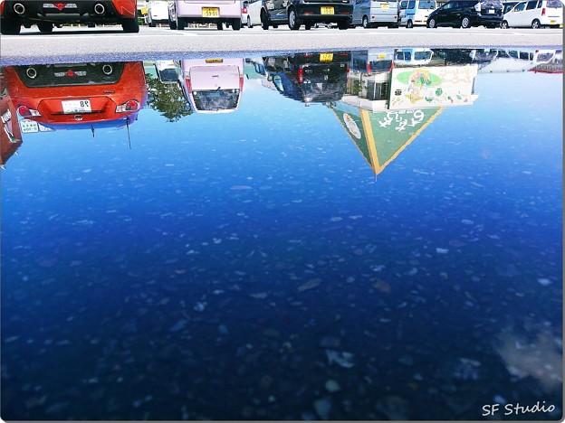 Photos: 秋晴れの水たまり