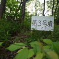 写真: 多摩川台古墳3号墳