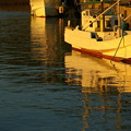 Photos: 夜の漁港