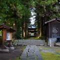 慈雲禅寺の参道