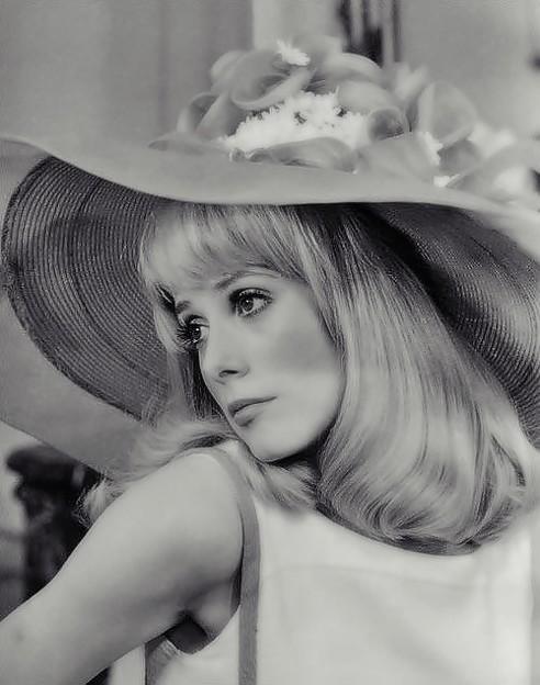 French Fairy Catherine Deneuve(44)