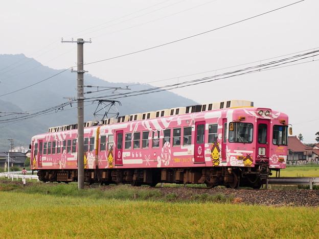一畑電車2000系島根っ子 北松江線川跡~武志02