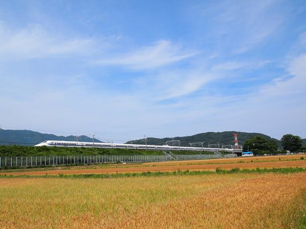 700系こだま   東海道新幹線米原~岐阜羽島01